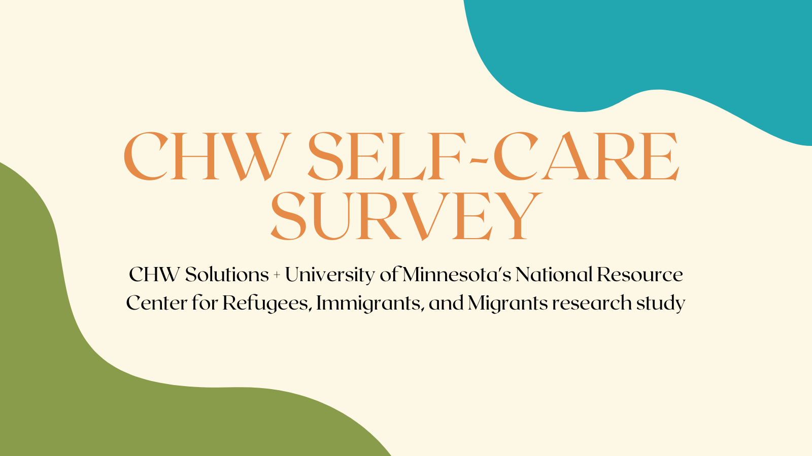 CHW Solutions Survey